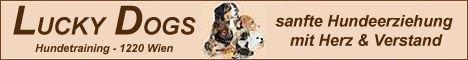 Hundeschule LUCKY DOGS (Wien)